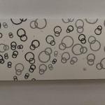 aggregation「環」2